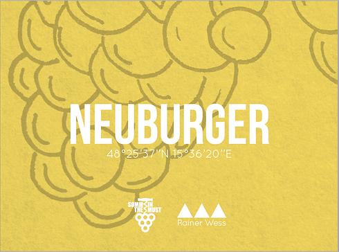 Neuburger V2.png