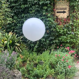 Giant White Balloon