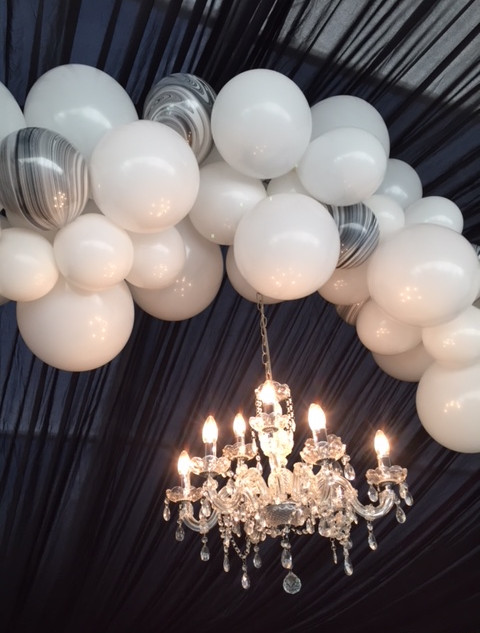 White Against the Black of a Silk Lined Marquee
