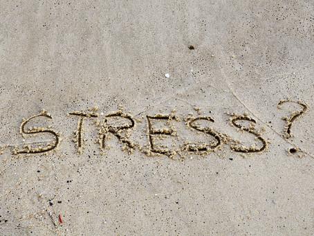 Stress vs Weight Loss