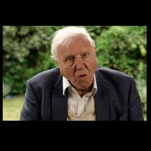 Iluuna asks Sir David Attenborough about the Polar Regions