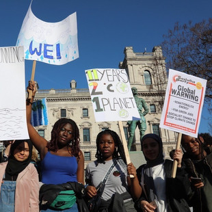 'You can't plant ice': 5 global youth activists on waking the world up