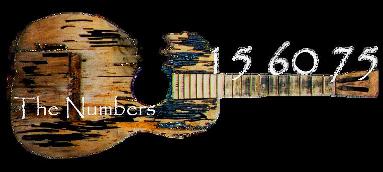 guitar_text_TRANS_burnt2.png