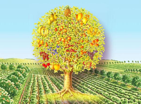 Vedic-land-tree-field.jpg