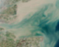 Thames_Estuary_and_Wind_Farms_from_Space