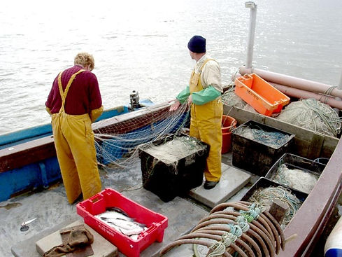 Fisheries, Sea