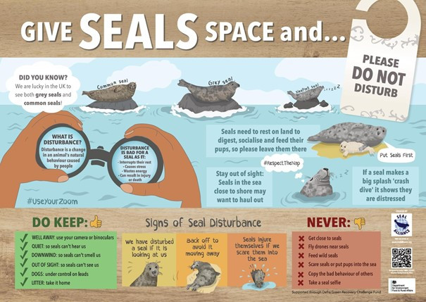 Infographic made by the Seal Alliance