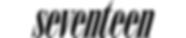 SEVLogo_bitmap.png