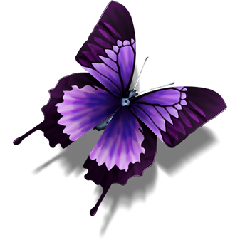 Sexy Butterfly image