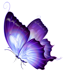 Erotic butterfly picture