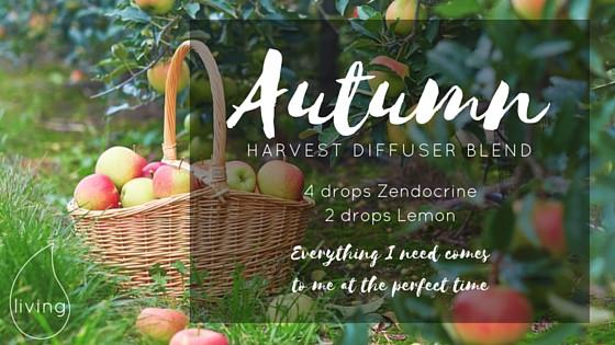 Autumn Harvest Diffuser Blend