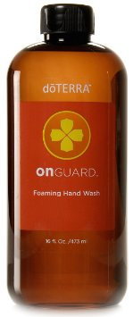 Single On Guard® Foaming Hand Wash