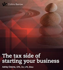 taxes-ashley-didone.jpg