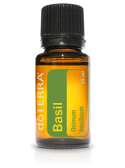Basil Essential Oil - 15ml