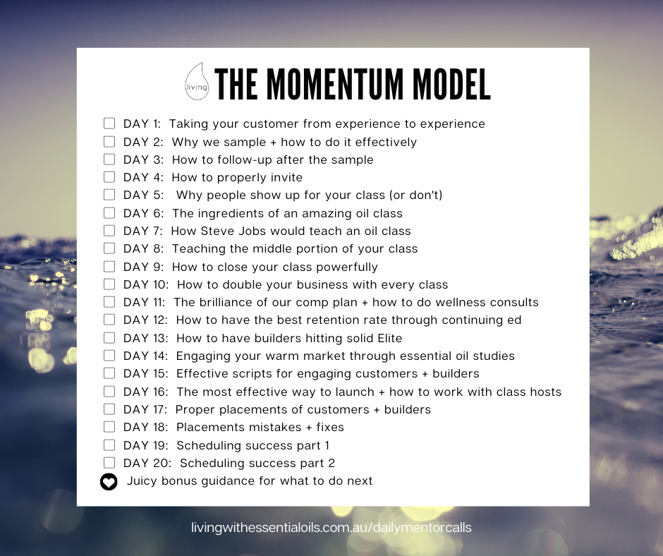 The Momentum Model Checklist.png
