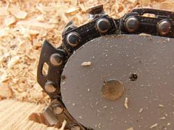 saw_chainring_chainsaw_chain_wood_firewo