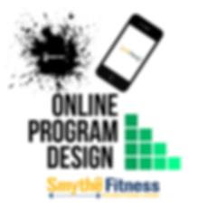online program design .png