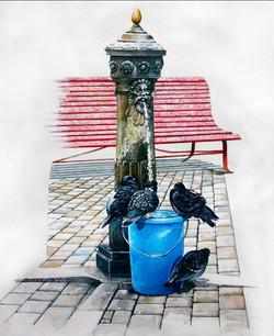 Bucket In Venice