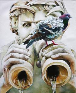 Pigeon in Piazza Navona