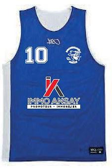 Shirt Ansay bleu.JPG
