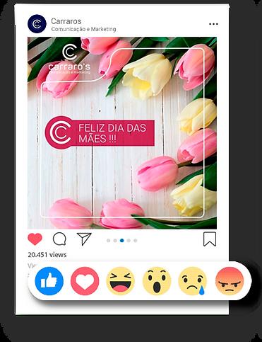 social-media-carraros-site_25.png