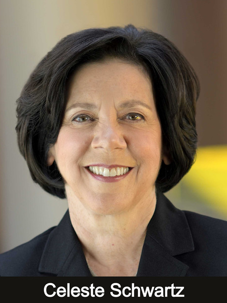 Vice President for Information Technology and Chief Digital Officer, Montgomery County Community College