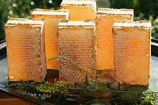 Сотовый мед с пасеки Сидоровых