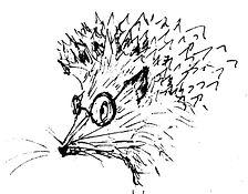 Isiah Berlin's hedgehog