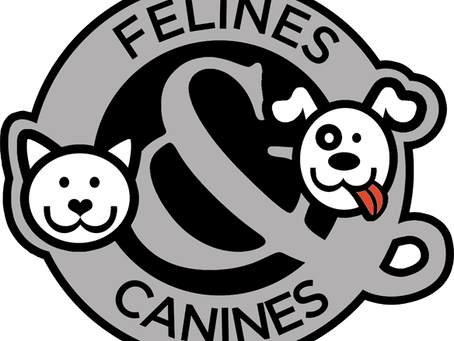 Felines & Canines
