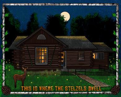 Stelzel_Cabin.jpg