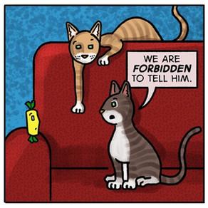 It is forbidden...