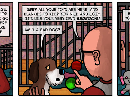 BobFred Stories presents: Crate training the dog