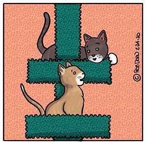 BobFred-Parker-Cooper-Cat-Tree.PNG