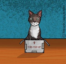 BobFredStories-scrapbook-pic-Parker-Box_