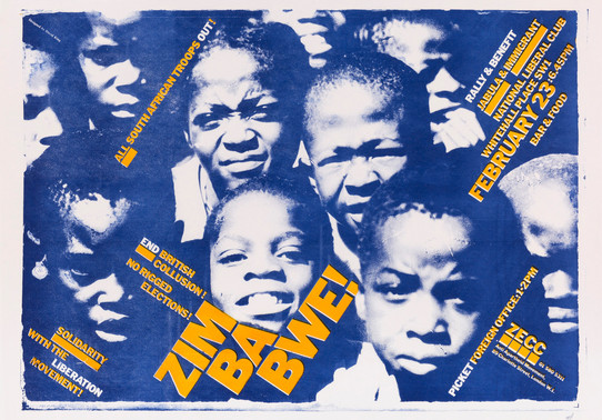 David King, Zimbabwe!, Zimbabwe Emergency Campaign Committee, Anti-Apartheid Movement, 1980