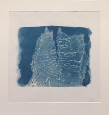 Terra Incognita Cyanotype