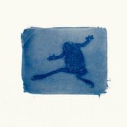 Dancing Toad-2
