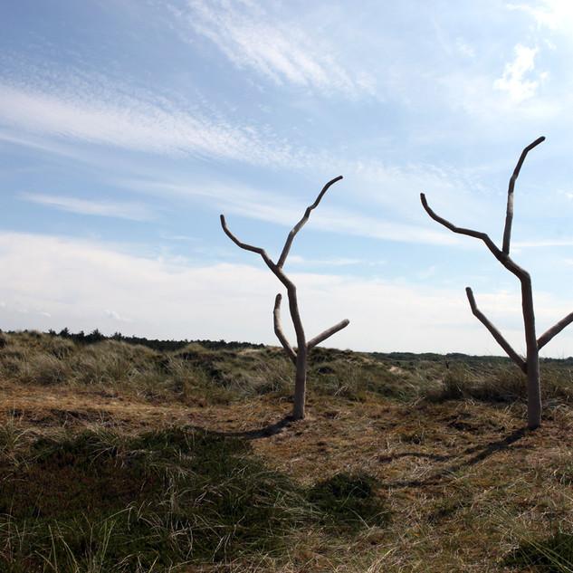 Contre Nature - TwoTrees