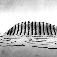 Streepheuvel ziijaanzicht