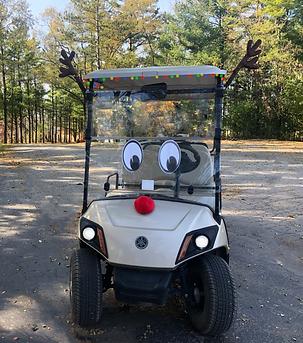 Golf Cart Limo