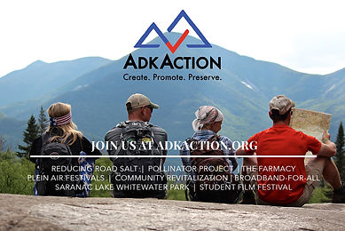ADK Action 1-2 Page C Ad (1).jpg