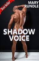 BS Shadow Voice Cover copy.jpg