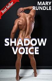 BS Shadow Voice Cover copy.jpg