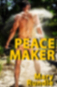 PEACE MAKER 3 - website.jpg