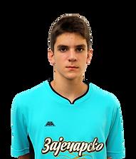 Aleksandar Puhar profil.png