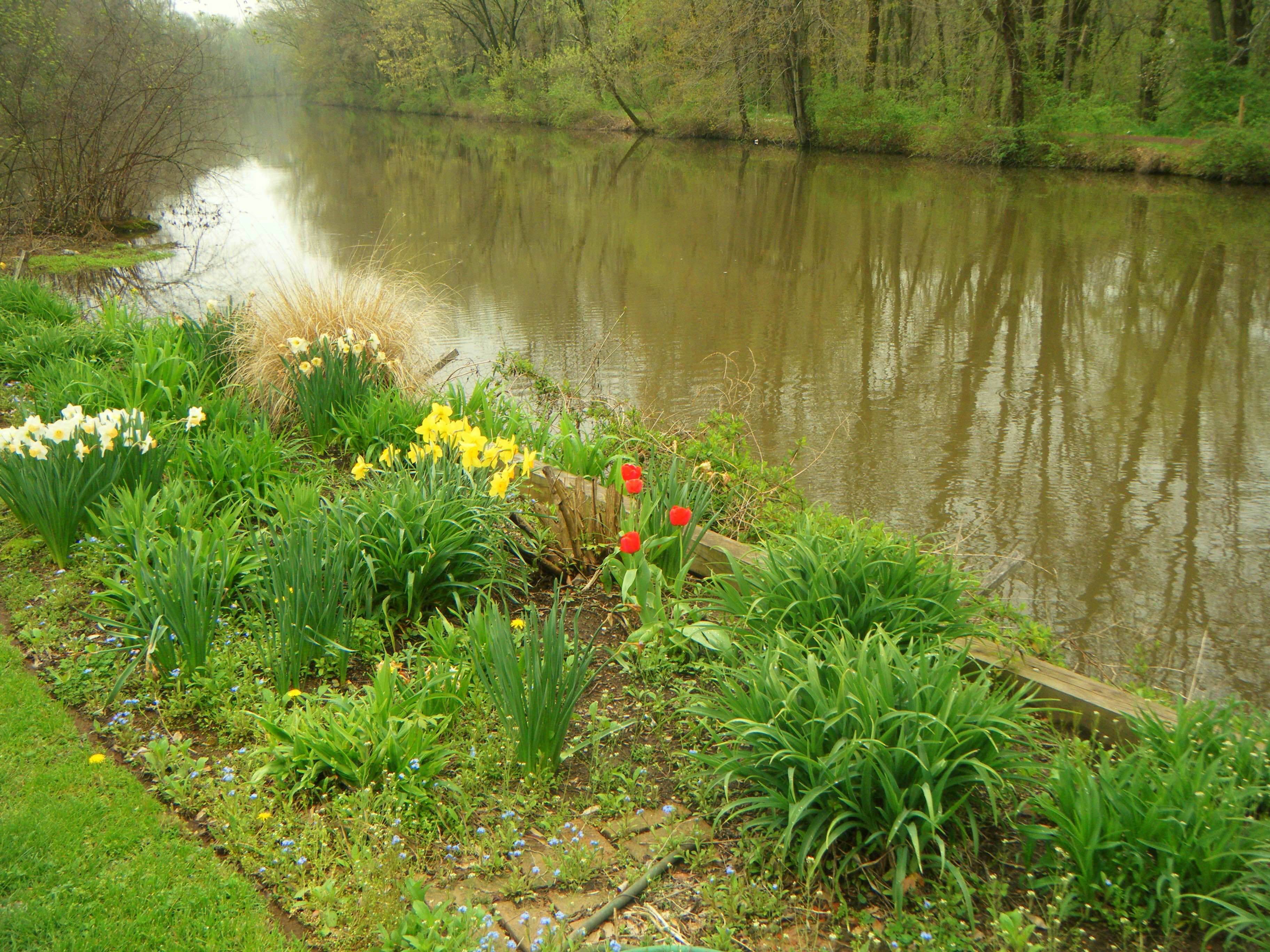 Bridgetenders Garden [flowers & riv]