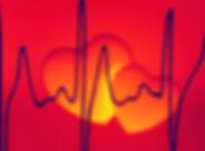 heart-799138_1280.jpg