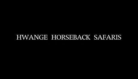 Vintage Horse Safaris