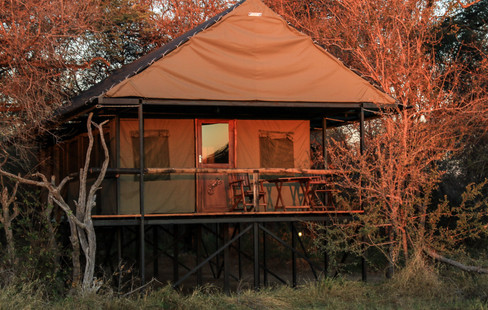 Bomani Tented Camp
