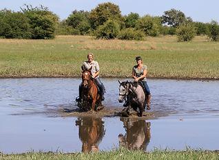 Imvelo Safari Lodges - Camelthorn - Pan